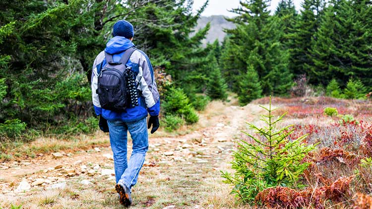 Workshop: Hiking the Appalachian Trail During the Winter