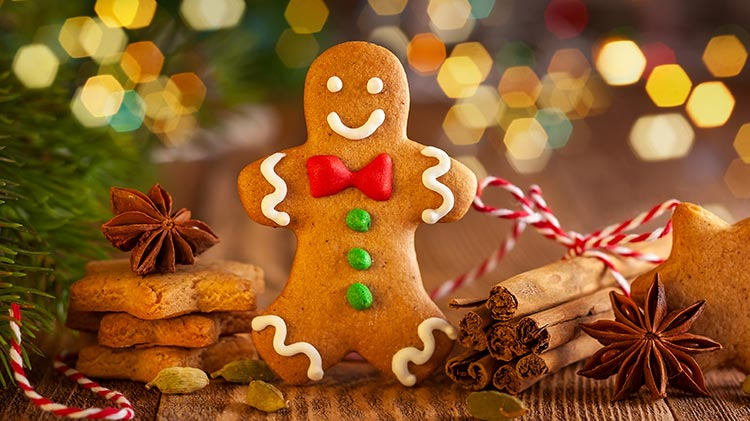 Catch the Gingerbread Man